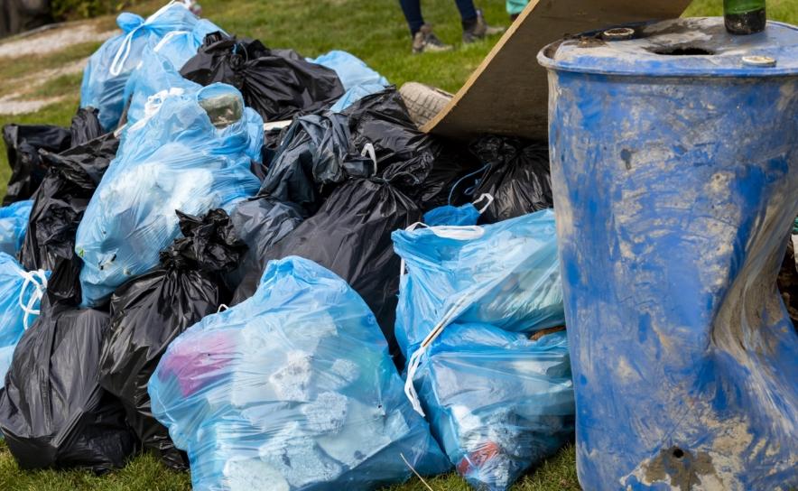 MitarbeiterInnen von Nestle sammeln Müll in Fischamend ein
