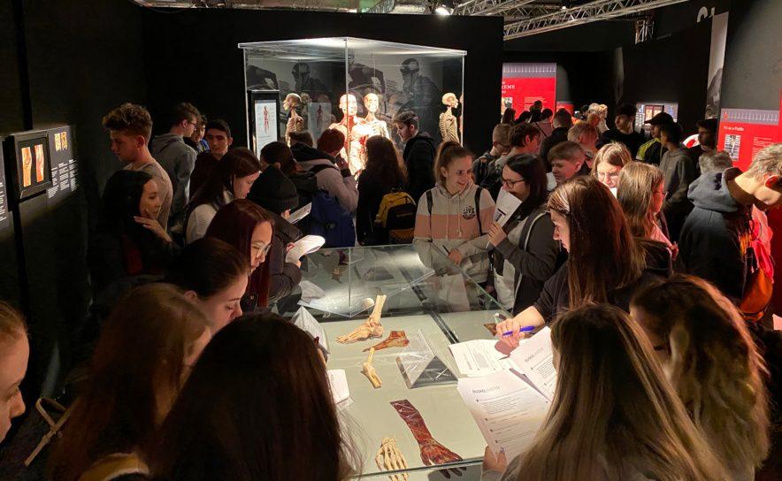 Schüler besuchen die Körperwelten Herzenssache Ausstellung