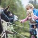 Elisabeth Köstinger möchte die Grenzen für deutsche Sommerurlauber öffnen