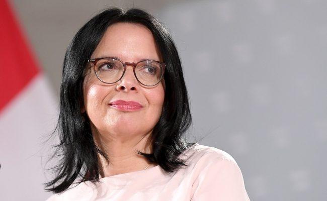 Die neue Kulturstaatssekretärin Andrea Mayer bei einer Pressekonferenz