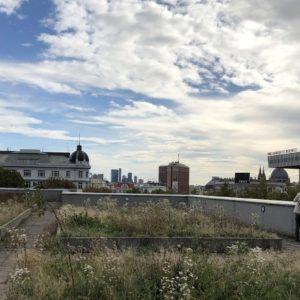 WEST – Das ehemalige Sophienspital steht bis Ende des Jahres Künstlern zur Verfügung