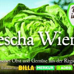 """""""Da komm' ich her"""" Kampagne für die Eigenmarke der Rewe International AG der Agentur Demner, Merlicek und Bergmann"""