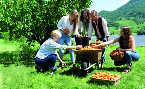 Uschis Garten bietet Fruchtaufstriche und Marmeladen in Handarbeit
