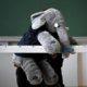 """Der Babyelefant ist Favorit für """"Wort des Jahres 2020"""""""