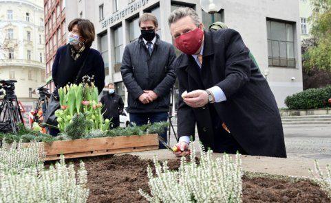 Tulpenzwiebel-Pflanzung mit Bürgermeister Michael Ludwig