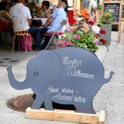 """Der Begriff """"Babyelefant"""" ist Wort des Jahres 2020 in Österreich"""