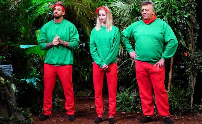 Die Outfits der Dschungelstars besteht aus zwei Grundfarben