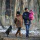 Tipps für Winterspaziergänge mit Hund im Lockdown